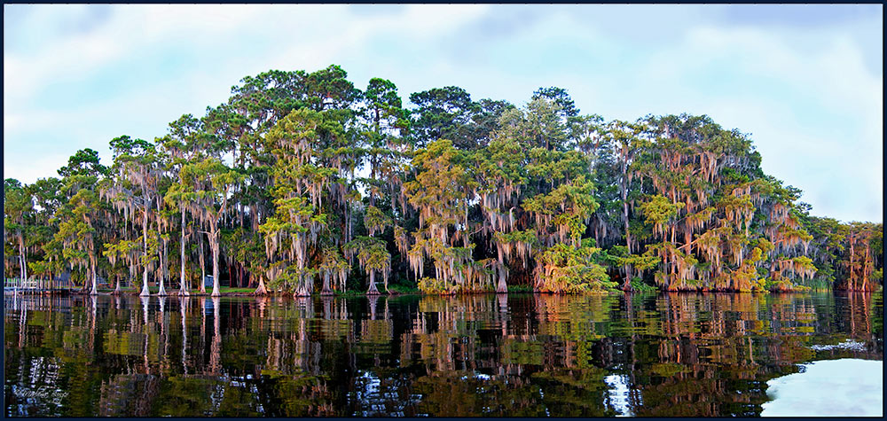 Cypress-Lake_Panorama1