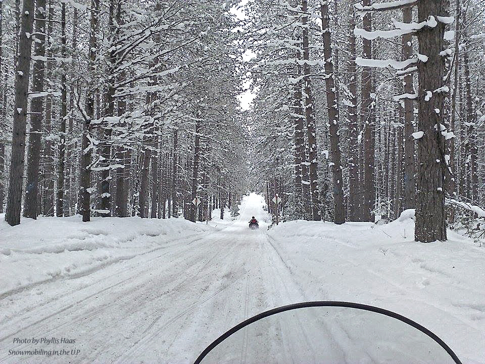 Phyllis's Snowmobiling_Woods_2