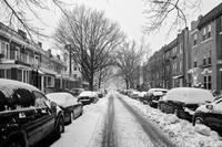 Snowy day in Bay Ridge March 14, 2017