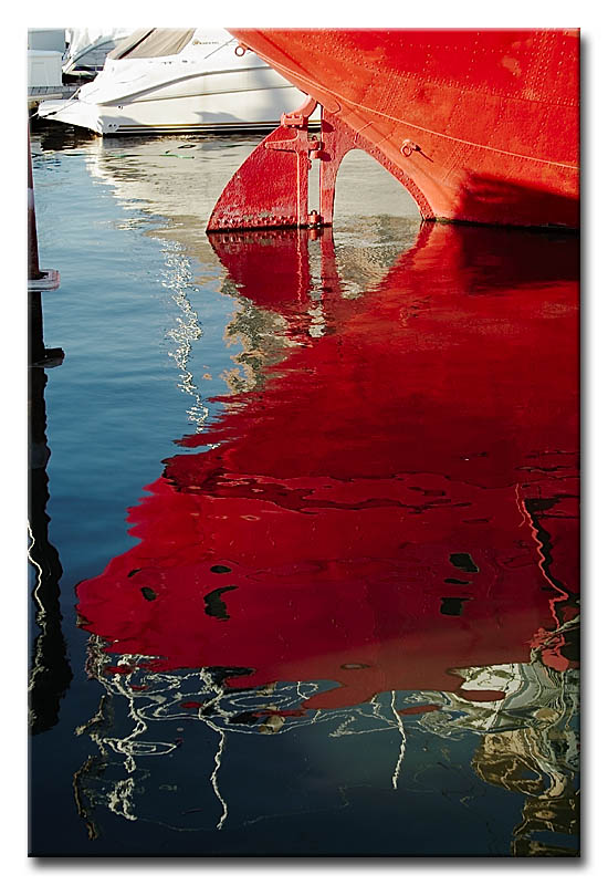 Red Reflections #2221