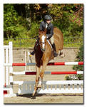 US Equestrian Team Talent Search #10982