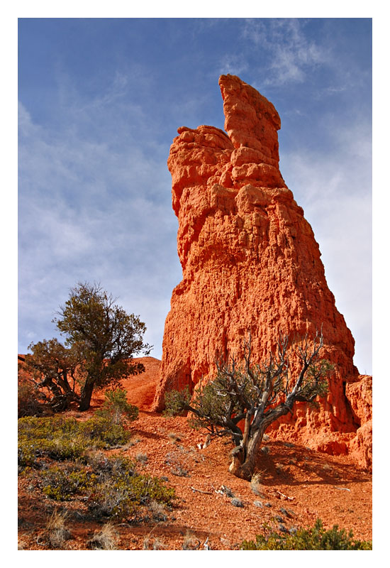 0357 Red Canyon
