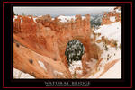 Bryce Canyon - Natural Bridge