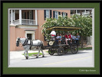 CRW_9642_horse_carriage_frame
