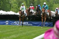 2006 Queens Cup Steeplechase - the fall