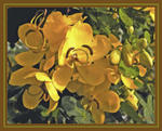 "Cassia Floral Giclée on Canvas -Size 26""x22"""