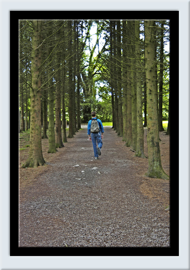 Drew walking in Blarney Forest