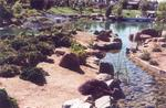Japanese Friendship Garden - Phoenix