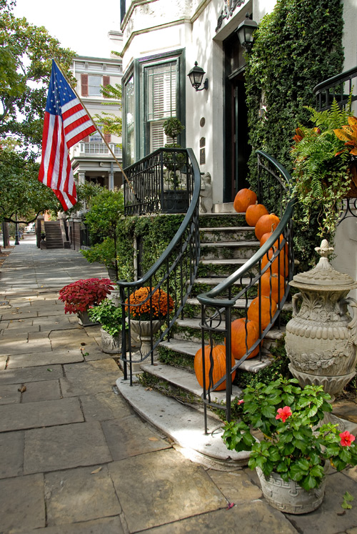 D5508-Savannah-steps