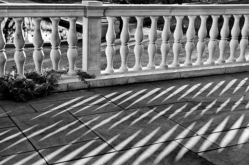 _DSC6562-Sunlit-fence-and-shadows
