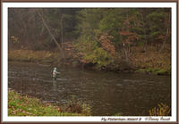 Fly Fisherman 3