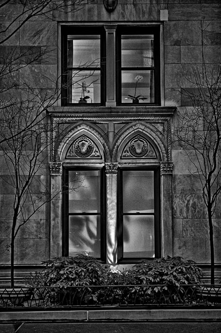 _DSC2204-Windows