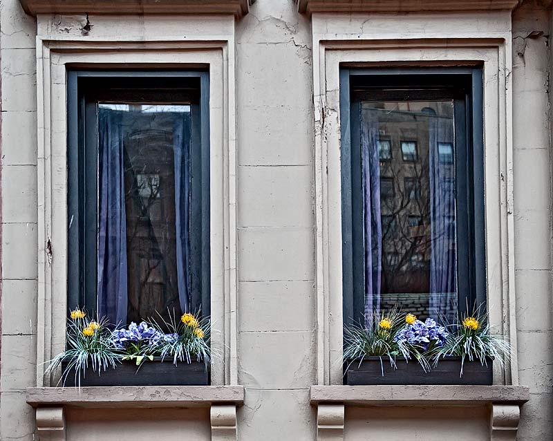 _DSC2187-Windows