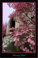Flowering Church