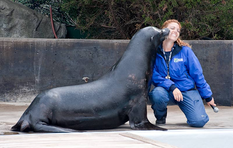 _DSC2017-seal-and-trainer