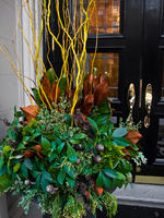 Marborough St door decor
