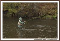Fly Fisherman 2