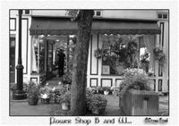 Flower Shop B and W